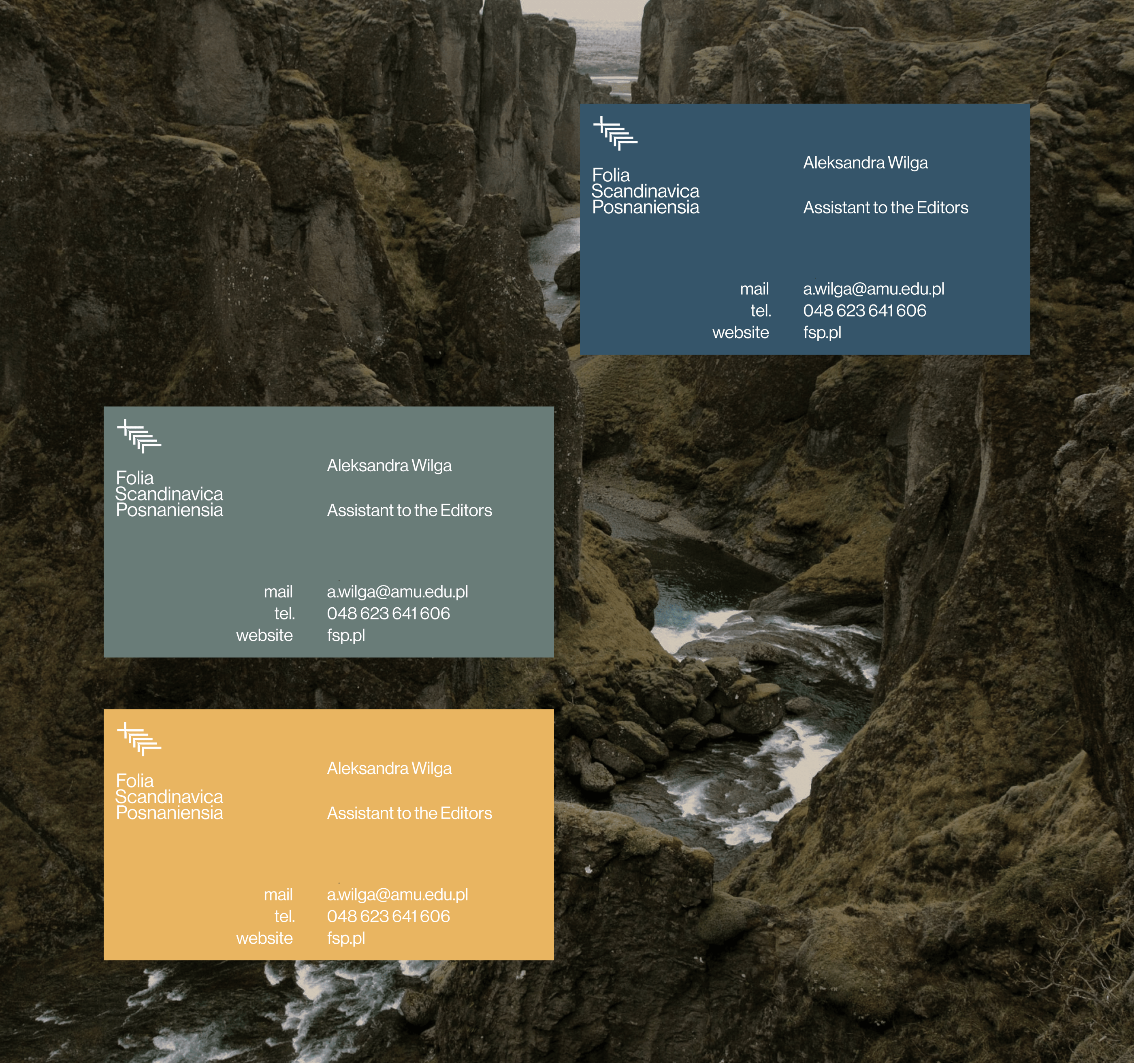 Business cards - Folia Scandinavica Posnaniensia