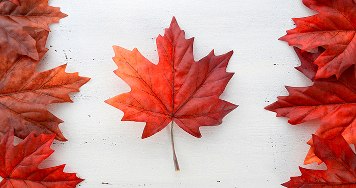 U.S. Exporters - Think Canada First!