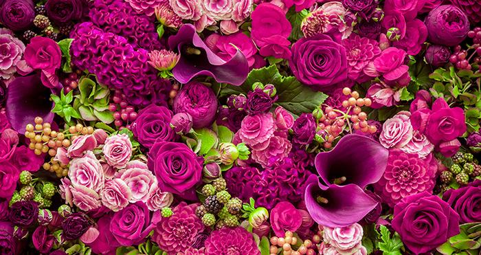 Резултат с изображение за flowers
