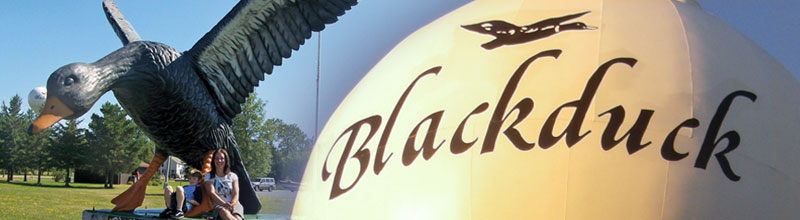Blackduck statue and water tower