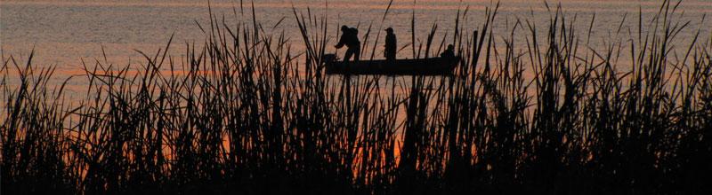 fishermen on lake at sunset through the reeds