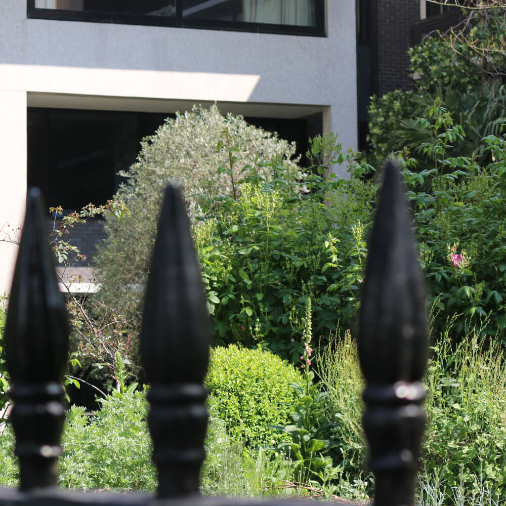 London Core Review - Royal College Of Physicians - Medicinal Garden Gallery - Picture 4