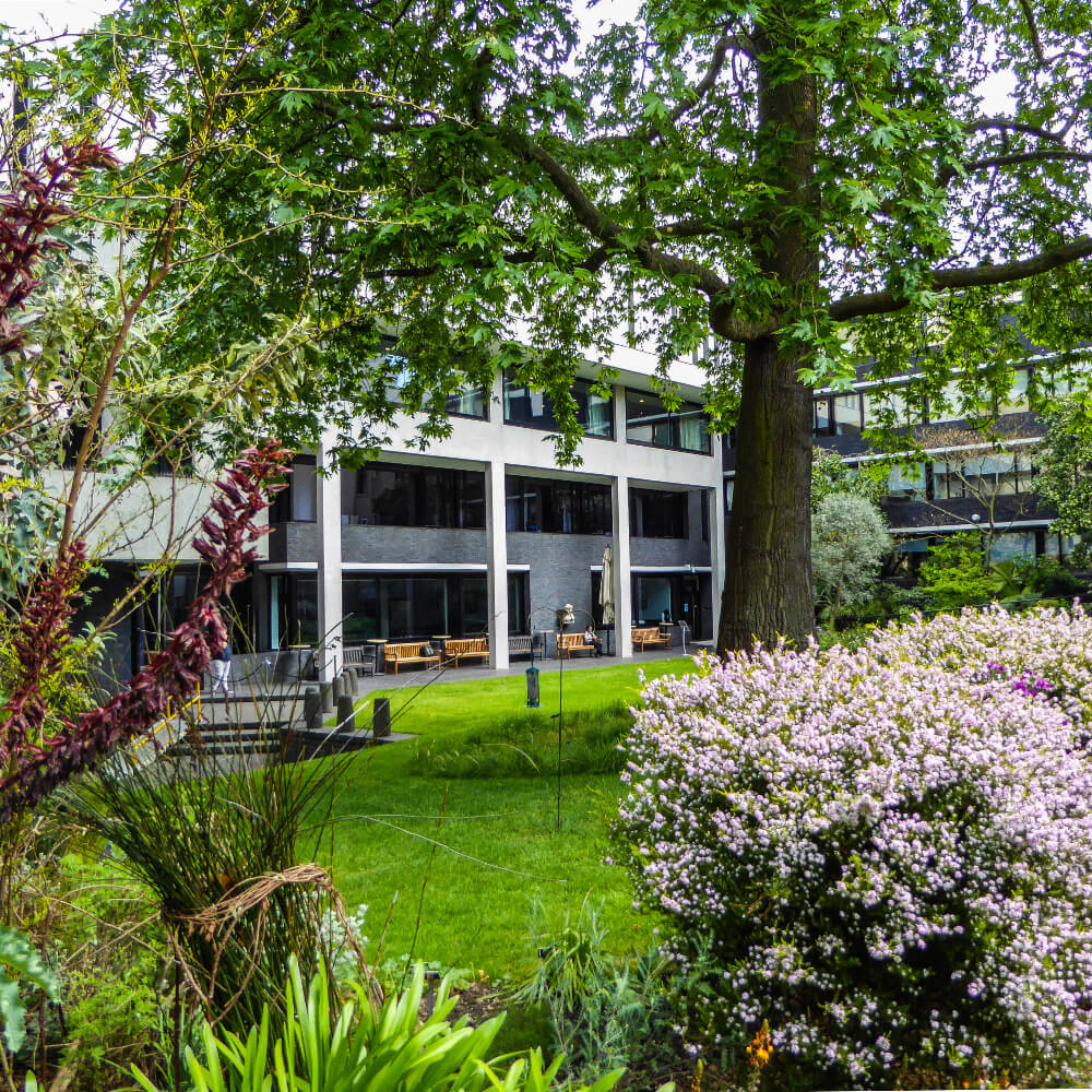 London Core Review - Royal College Of Physicians - Medicinal Garden Gallery - Picture 16