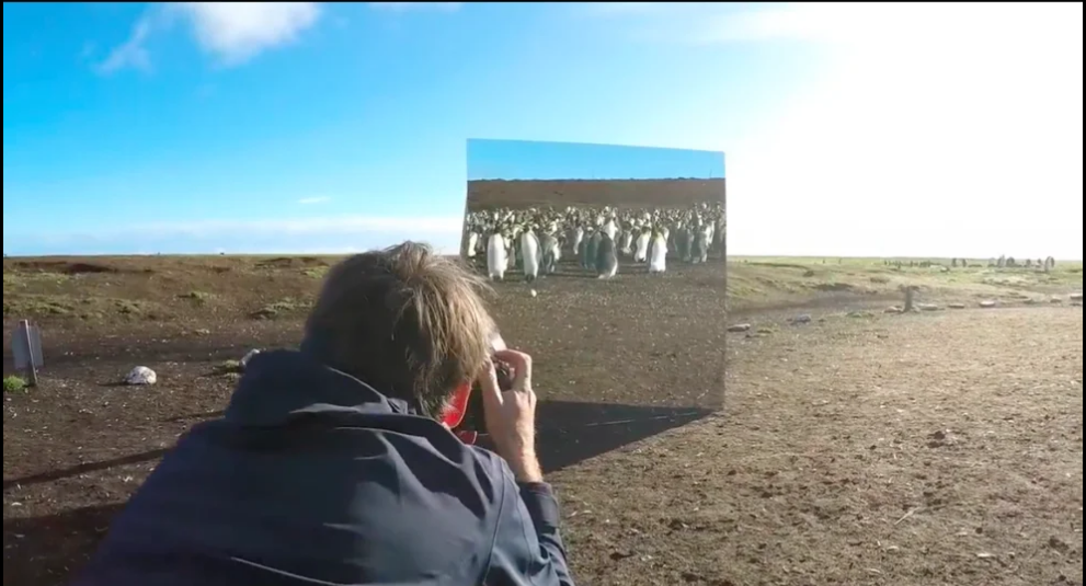 mirror Project Falkland Islands