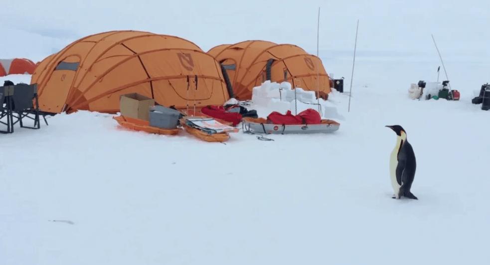 tent tour