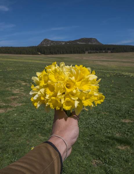 et voila apres quelques minutes on se retrouve avec un joli bouquet