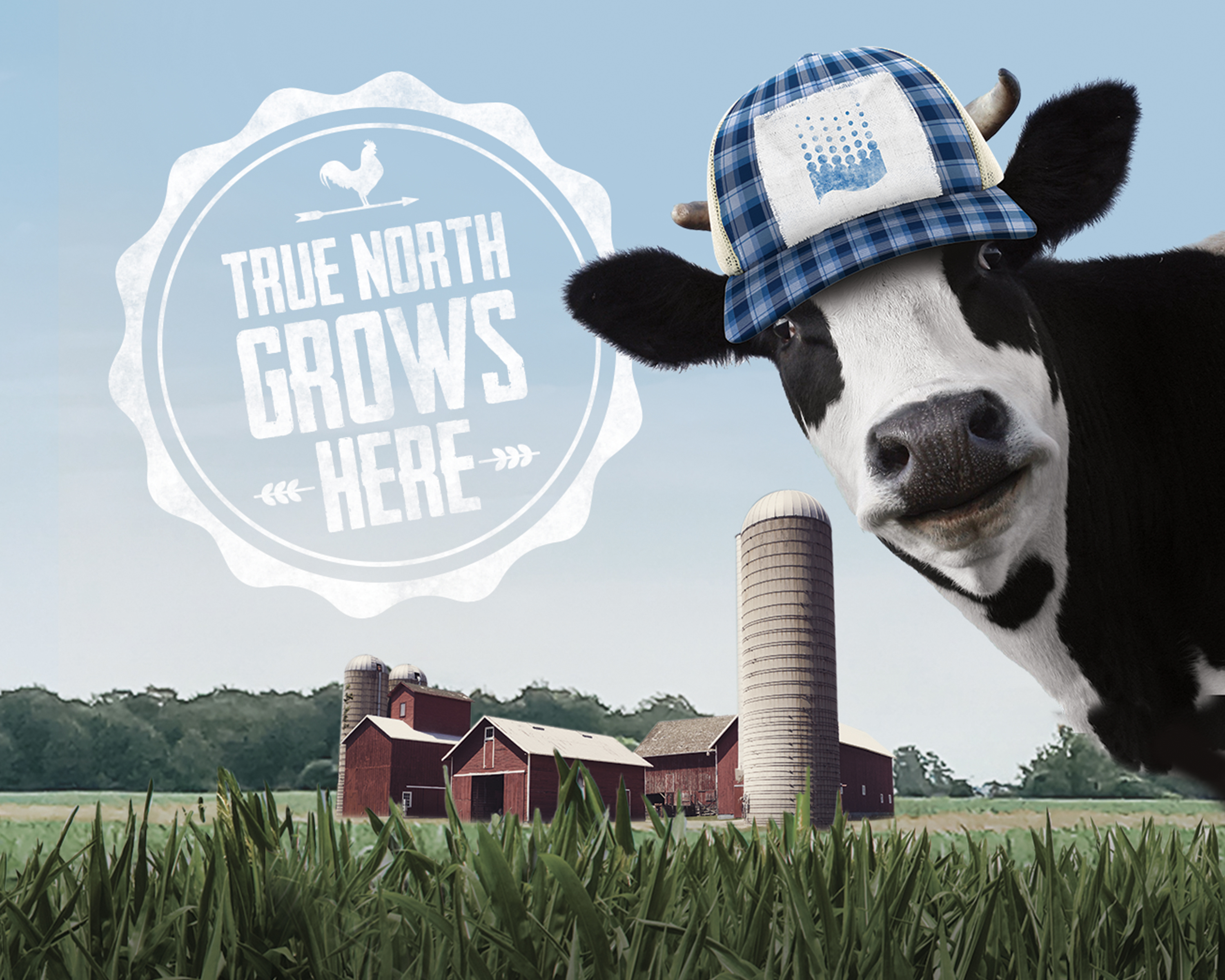 """Red barn in a field with the head of a blue plaid ballcap wearing cow and the headline """"True North grows here""""."""
