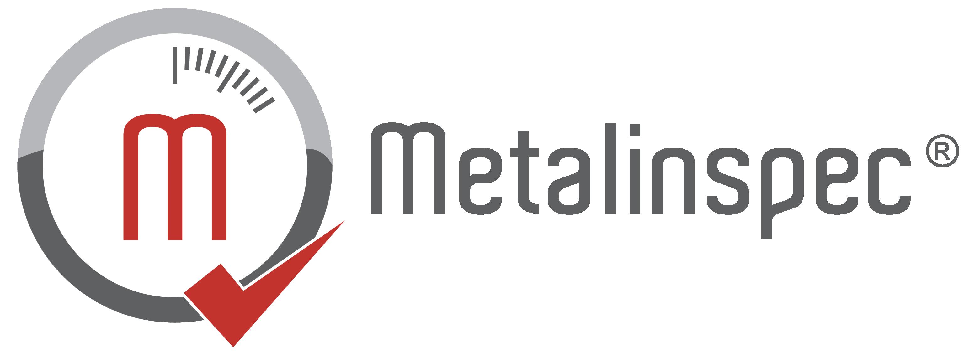 Metalinspec Logo