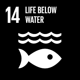 United Nations Goal 14: Life Below Water
