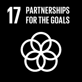 United Nations Goal 17: Partnership For The Goals