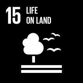 United Nations Goal 15: Life On Land