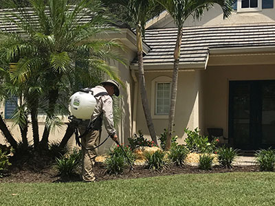 weed control treatment