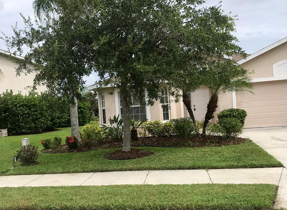 Landscape island front yard
