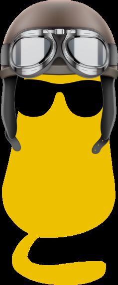 Cat with helmet