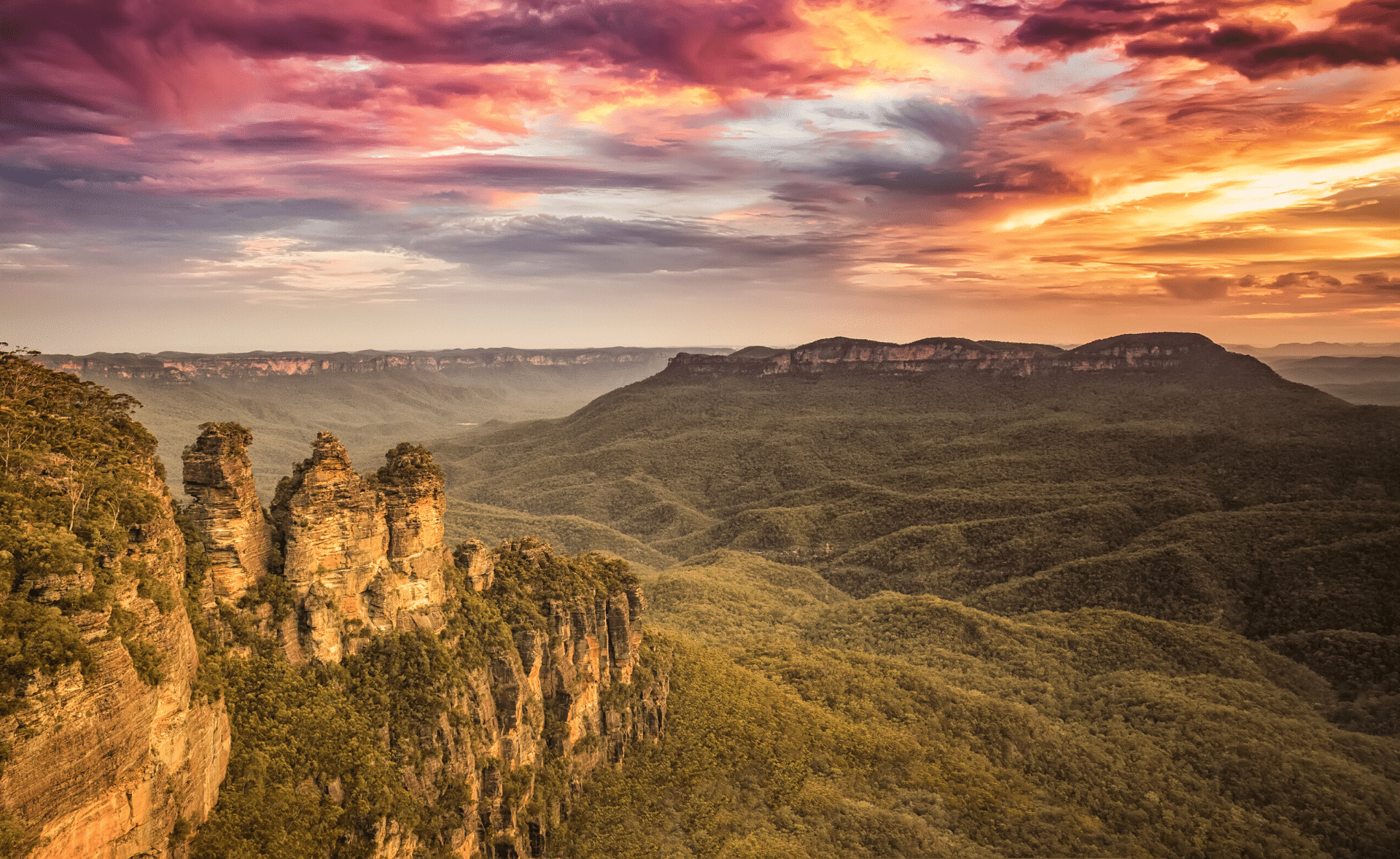 Blue Mountains Ultra Trail Australia Training Run Guides