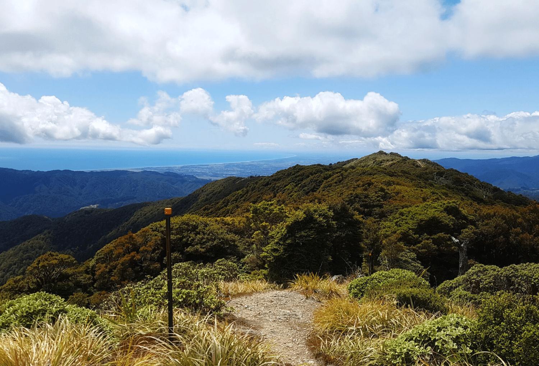 New Zealand Trail Runs RunHunters