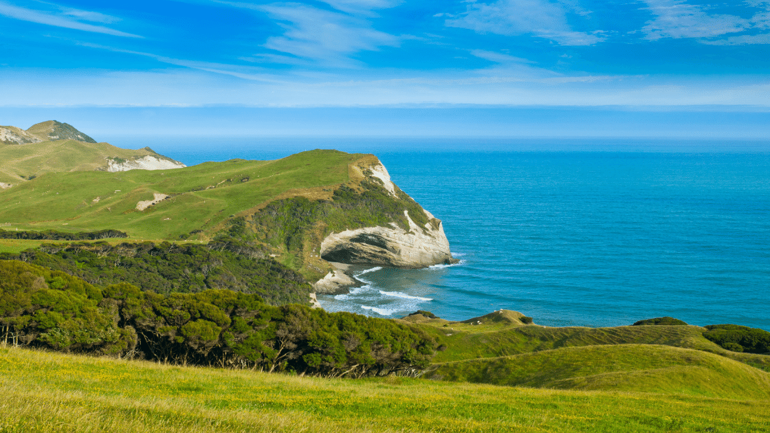 Cape Farewell New Zealand Trails