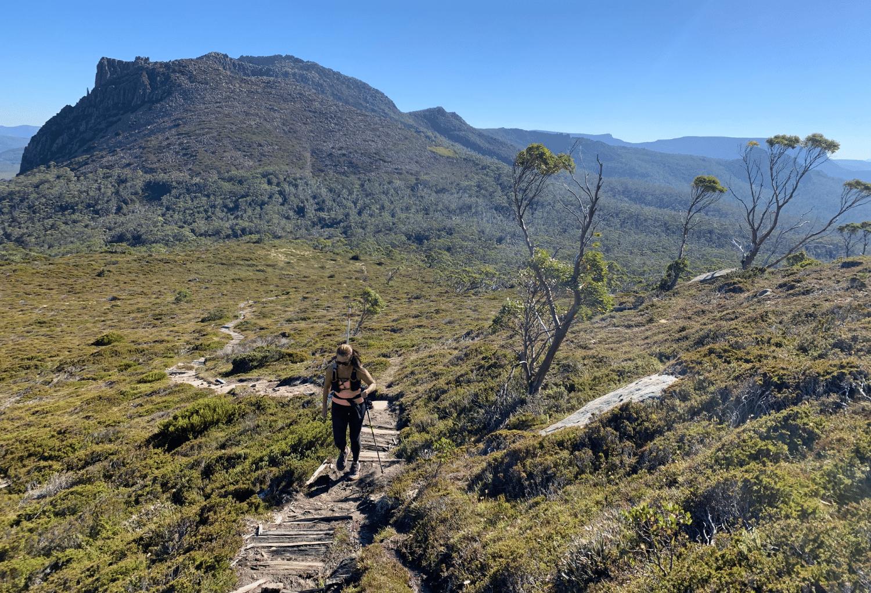 Mount Rufus Trail Tasmania Capra