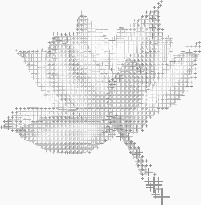 A flower made out of plus symbols