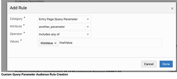 Custom query parameters