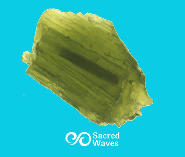 Moldavite - 4.1 Grams