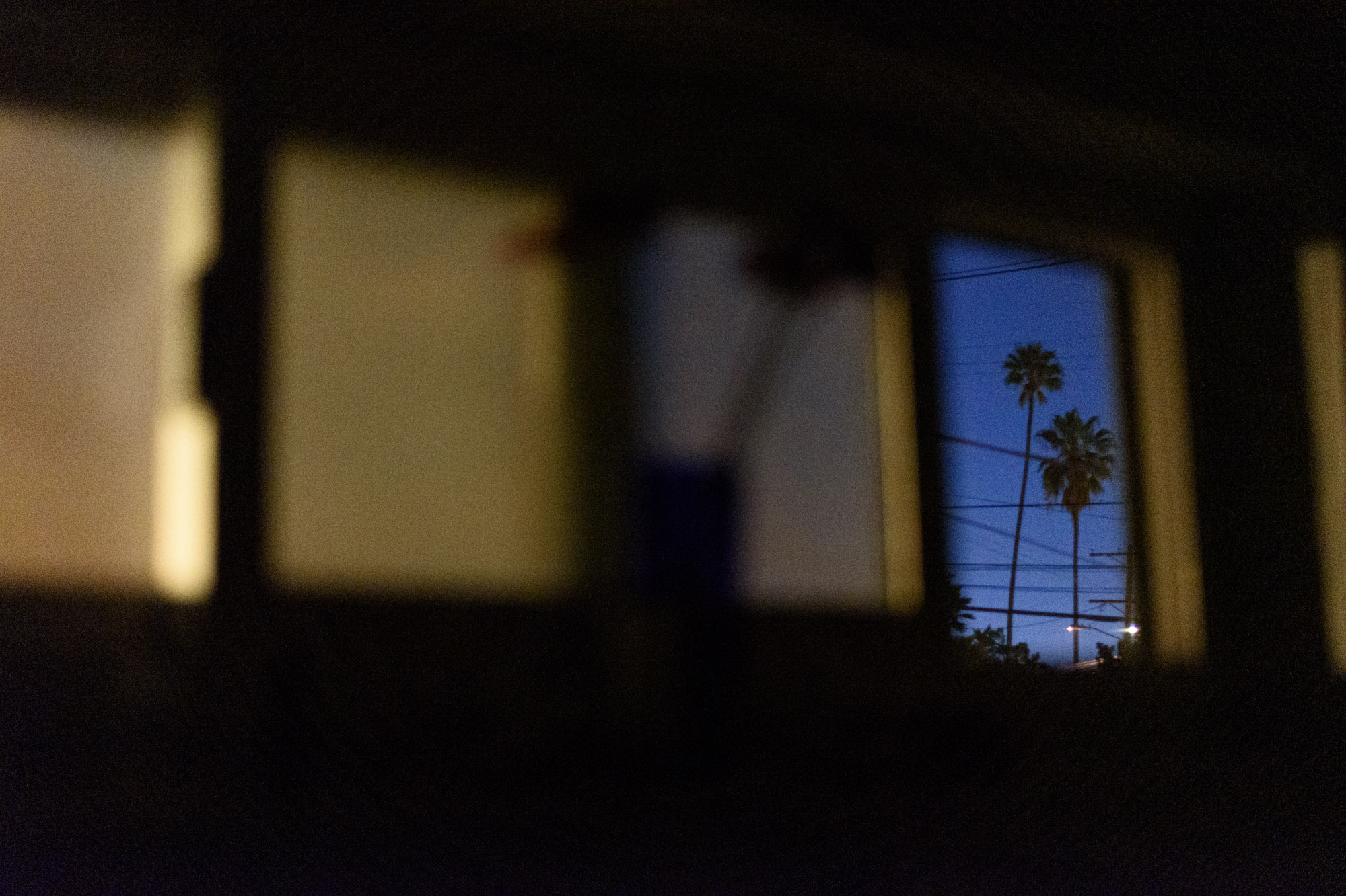 two palm trees are framed through an open bathroom window in Los Angeles, CA