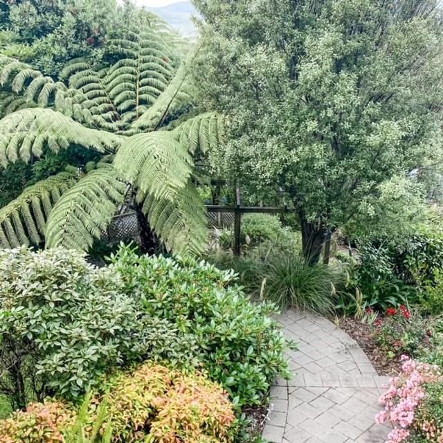 The garden at Hayley's energy healing room, Lower Hutt