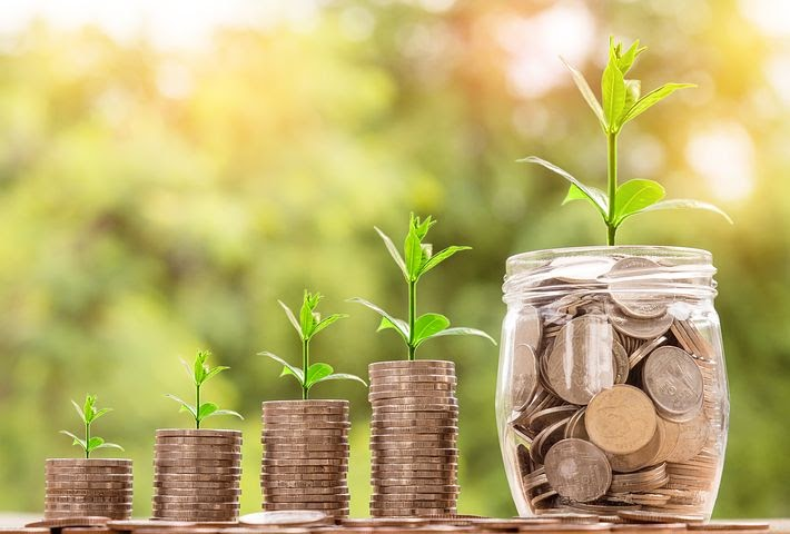 a stack of coins increases as a plant grows out of it representing the growth of a company