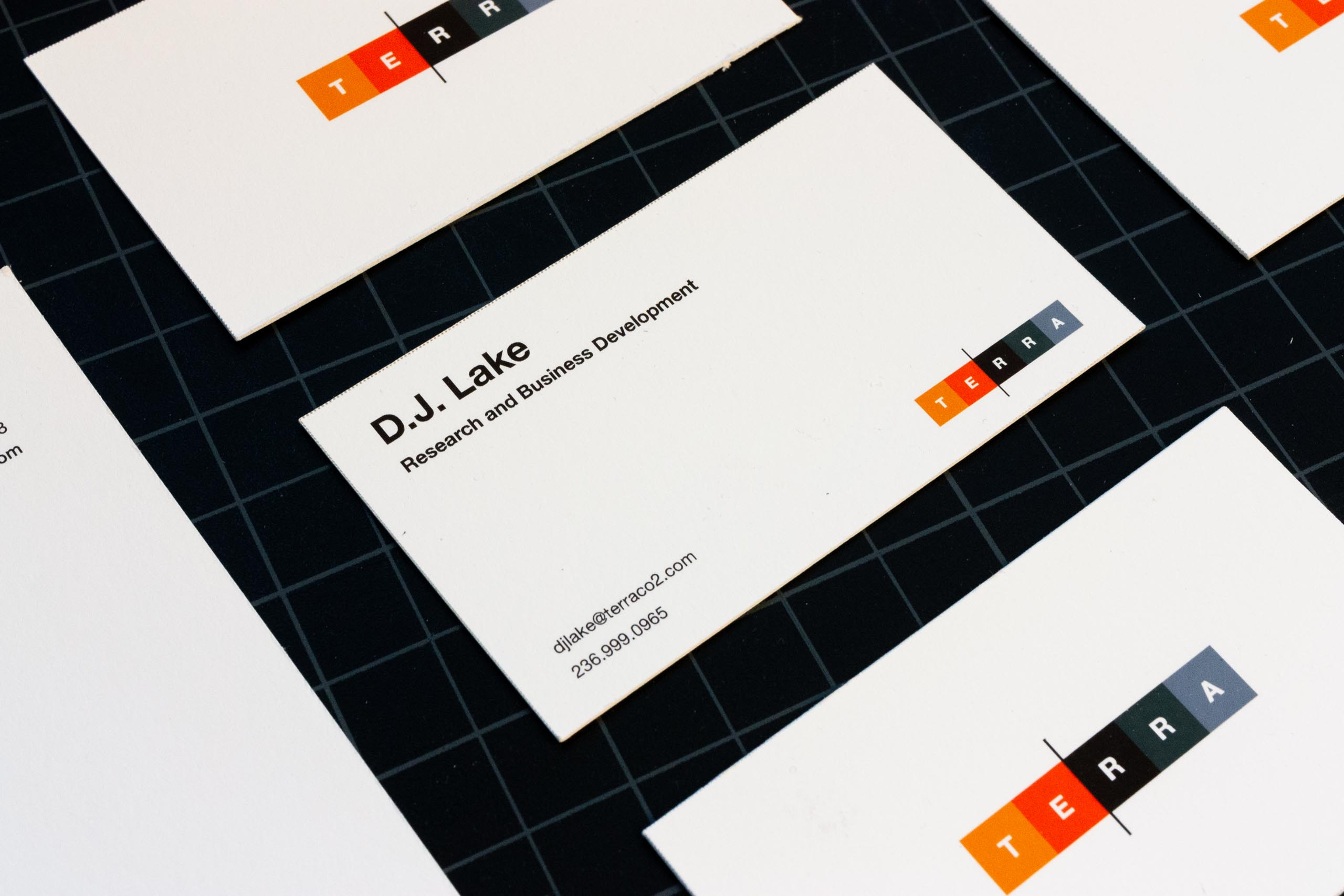Front of Terra CO2 business cards with information set on a grid in Helvetica Neue — by Yagnyuk.