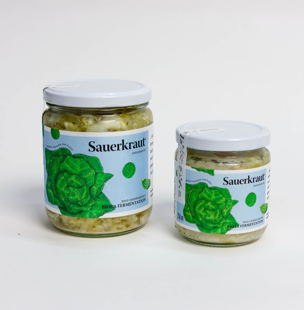 Biota Fermentation Sauerkraut Jars in 500ml and 250ml with vibrant green cabbage illustration by Jessica Fraser — by Yagnyuk.