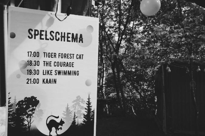 Jag hamnade på sommarens kanske sista skogsfestival