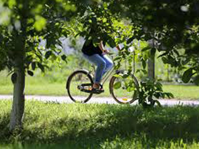 Outdoor activities photo