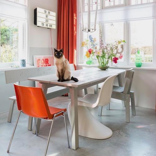 Nederlandse interieur influencer Anki Wijnen in de Influencer DNA top 30 lijst