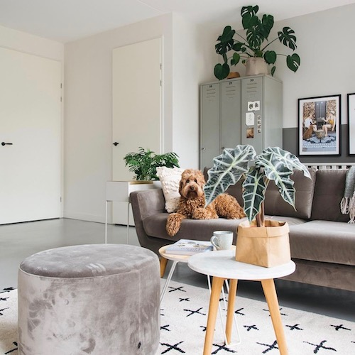 Nederlandse interieur influencer Anne Heijmans in de Influencer DNA top 30 lijst