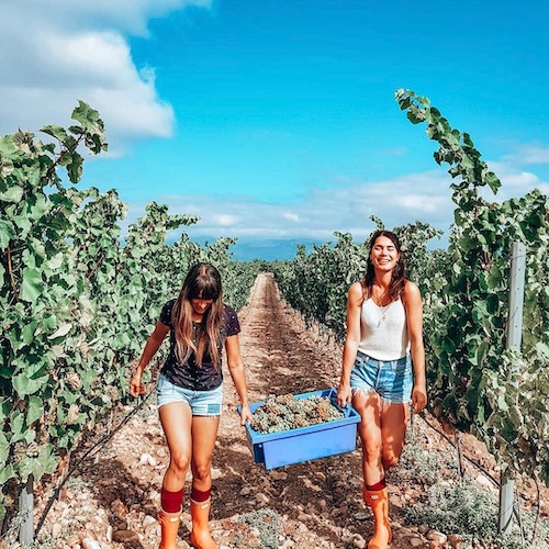 Nederlandse Travel Influencer Sarah Reinhoudt & Elke Salverda in de influencer DNA top 30 lijst
