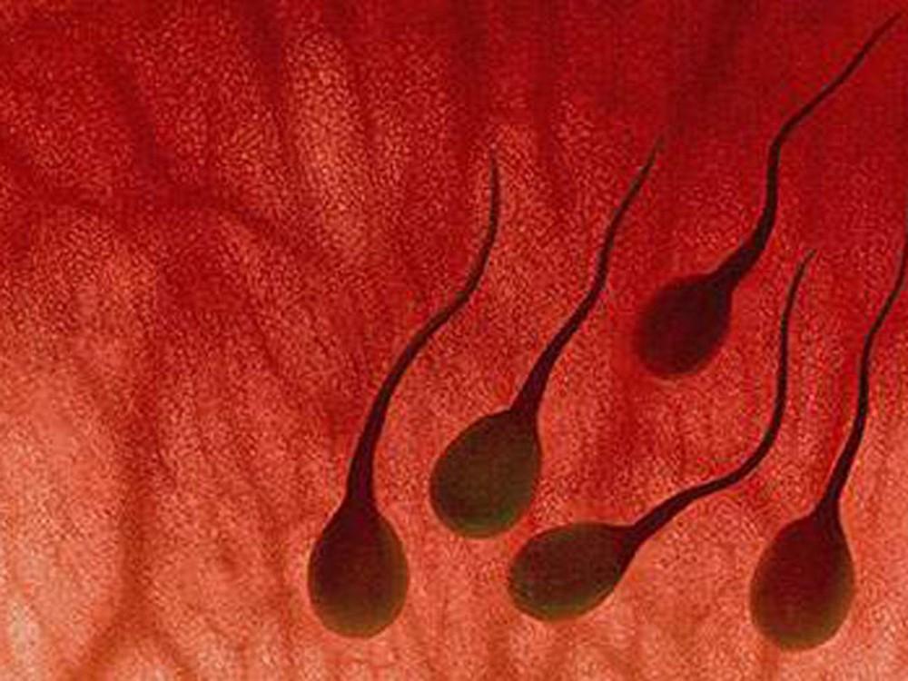 Tinh trùng có máu có độc hại không