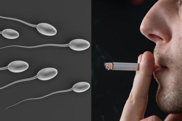 Dấu hiệu tinh trùng loãng