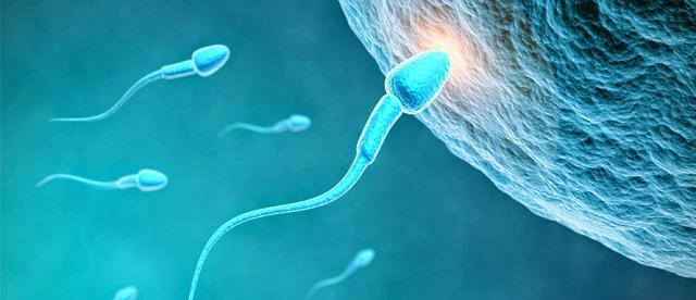 Quan hệ nhanh ra có thai không