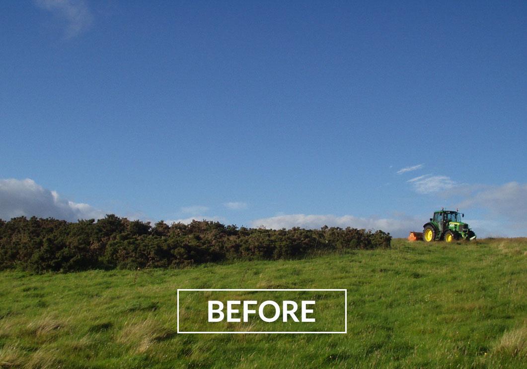 Vegetation Maintenance