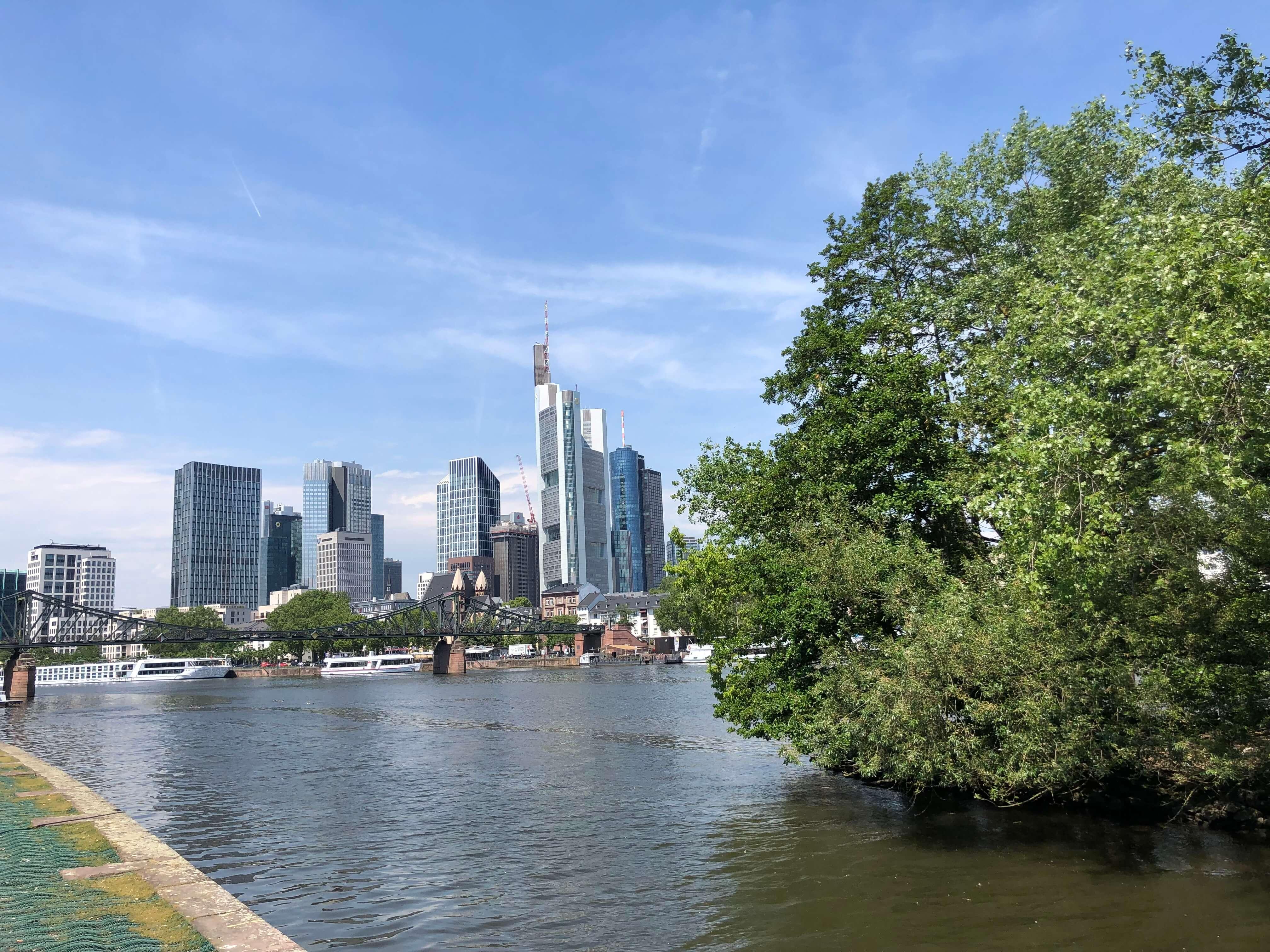 Frankfurt Skyline Mainblick Lizenzfreies Bild
