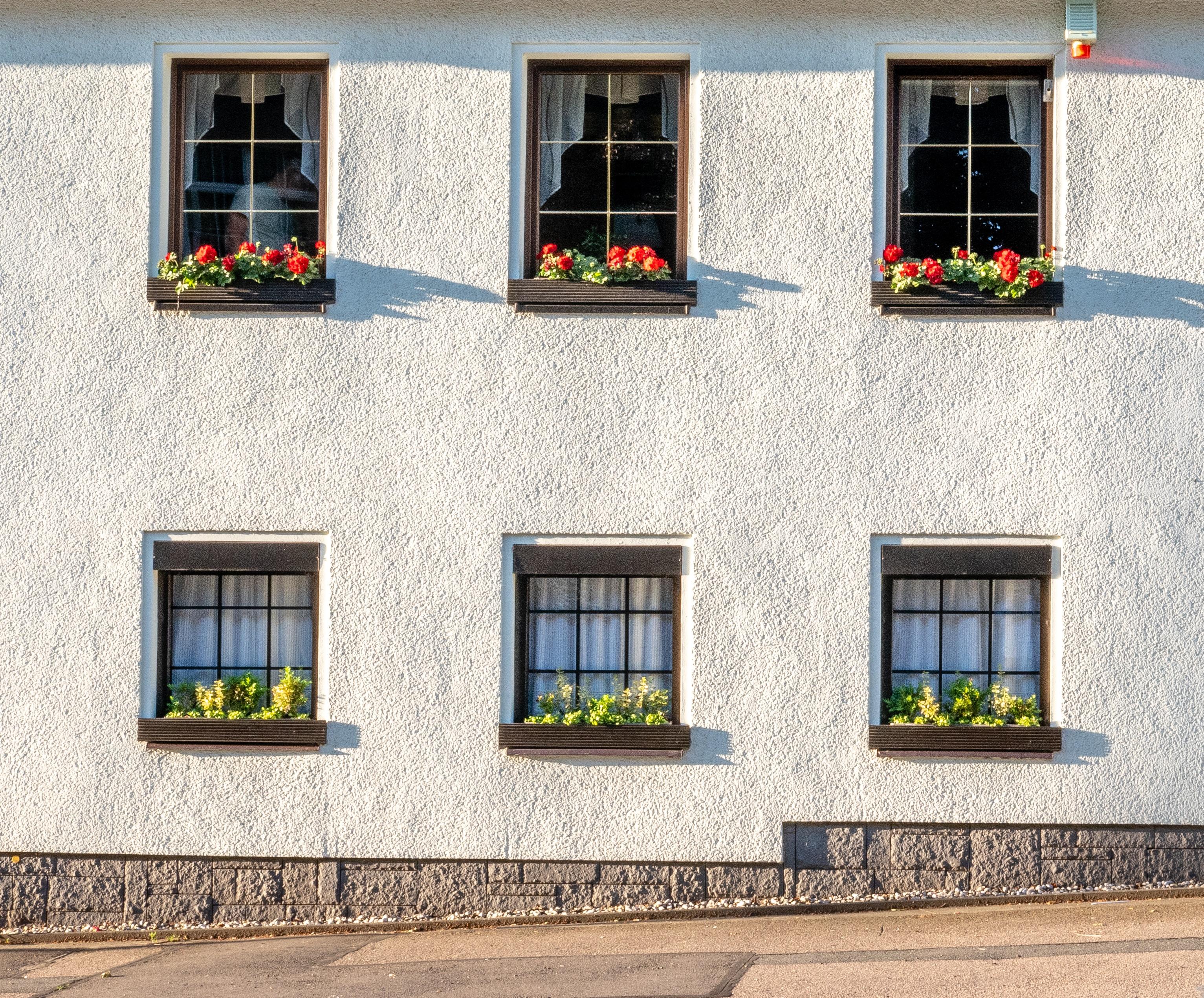 Liste der besten Immobilienmakler in Dresden