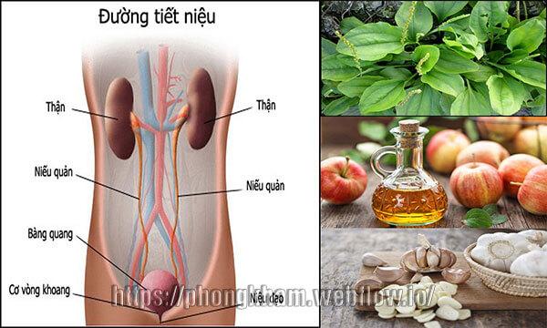 9 cách Điều trị viêm đường tiết niệu bằng các phương pháp dân gian