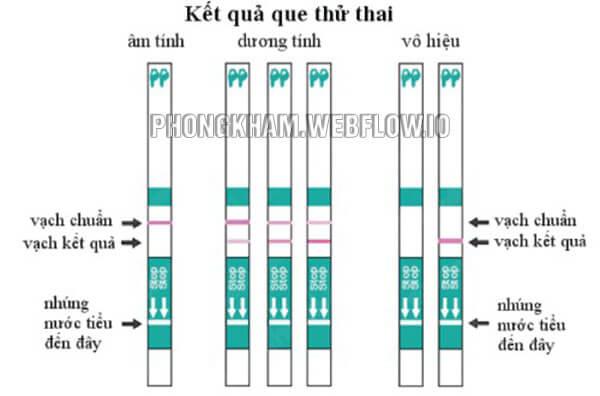 Cách sử dụng que thử thai Quickstrip