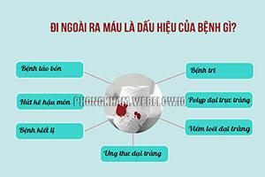Đi ngoài ra máu 11 nguyên nhân gây bệnh thường gặp nhất