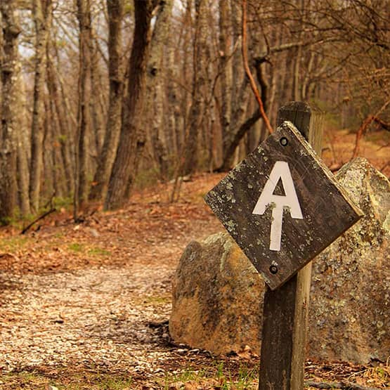 "A photo of the Appalachian Trail. It's focused around the letter ""A"" painted on a piece of wood symbolizing the beginning of the trail."