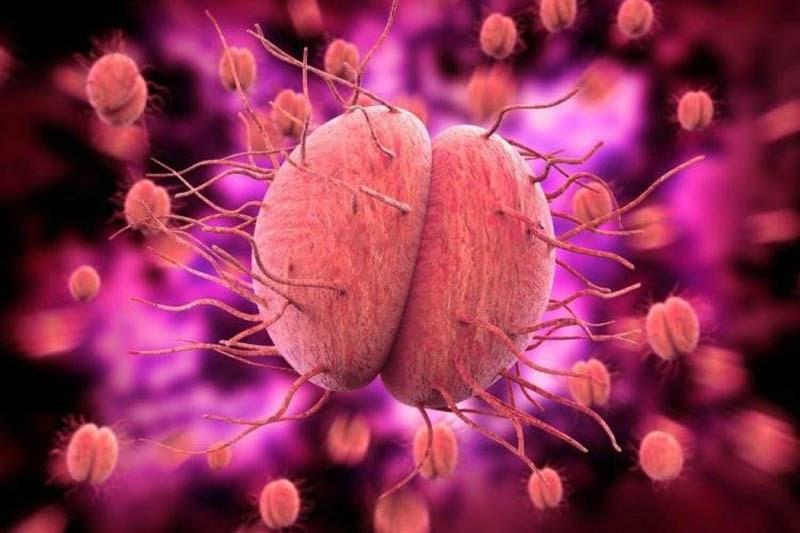 Khuẩn lậu cầu có thể xâm nhập và khiến khớp nhiễm khuẩn