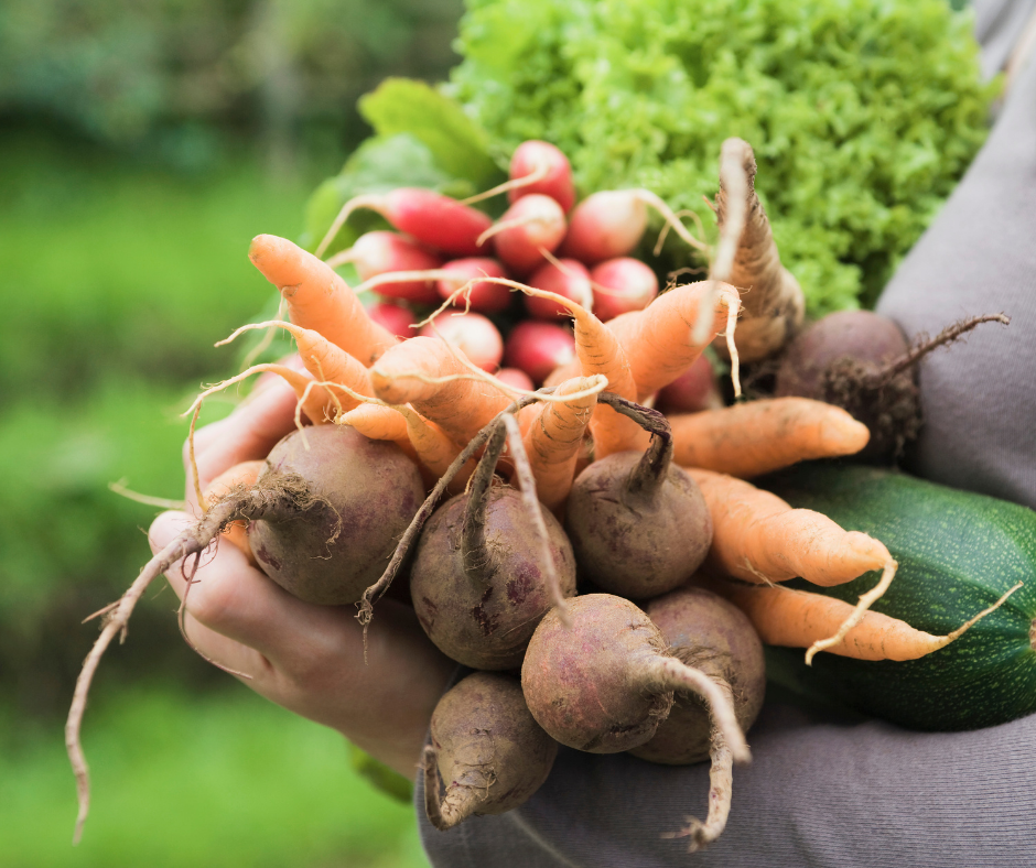 An armful of organic fruits and vegetables