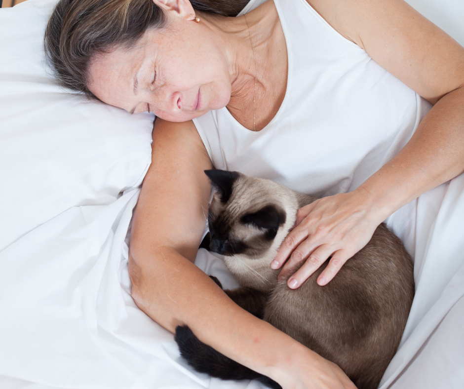 Woman napping with cat