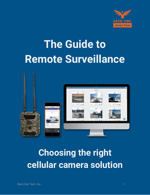Barn Owl remote surveillance with cellular cameras