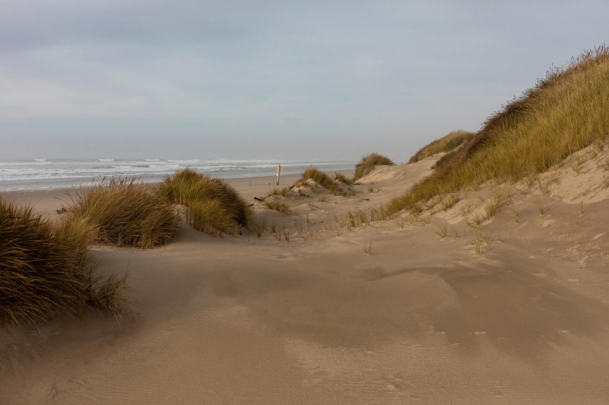 Sitcoos Beach, Oregon Dunes Recreation Area, OR